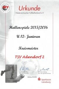 Kreismeister 2016-1
